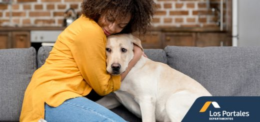 razas perros ideales apartmentos