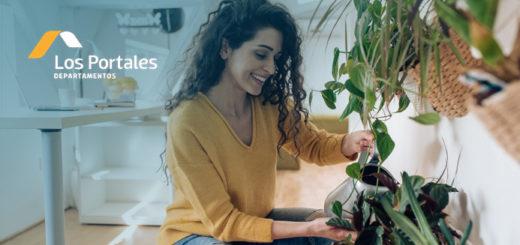plantas departamento